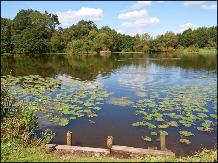 Worthington Lakes