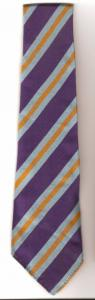Gidlow Middle Tie