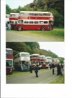 Preserved Buses At Haigh Hall  1