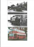 Ribble Buses