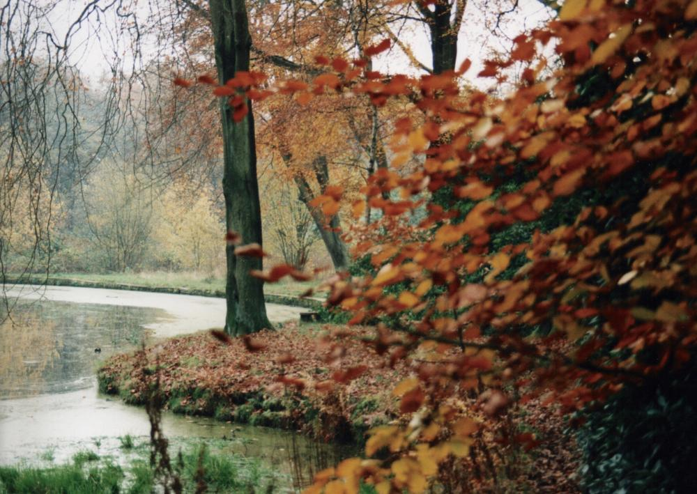 Autumn in the Plantations 4
