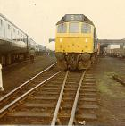 Springs Branch open day 1970