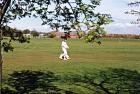 Aspull Cricket Field