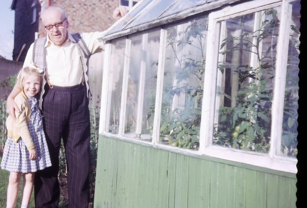 Grandad  with his greenhouse