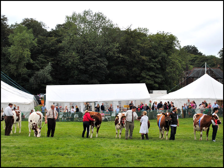 Haigh Show (1 of 4)