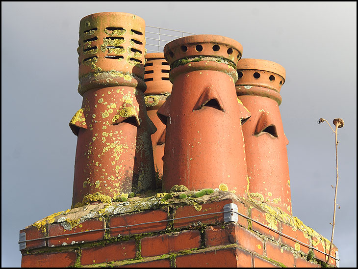 Chimney pots in Standish, with weed.