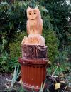 Owl, enthroned